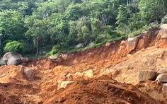 Khởi tố vụ án sau khi gần 2ha rừng phòng hộ trên núi Thị Vải bị phá nát