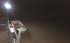 Người đàn ông bị điện giật chết khi chài cá ở sông Cái Cối