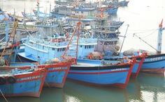 Phó thủ tướng: Tuyệt đối không khai thác hải sản trái phép để bị áp 'thẻ đỏ'