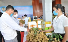 Kết nối tiêu thụ nhãn lồng Hưng Yên tới hơn 21 quốc gia, bán hàng qua thương mại điện tử