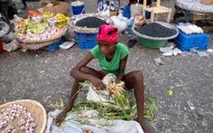 Biểu tình và bất ổn lan rộng tại Haiti sau vụ ám sát tổng thống