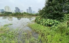 Dự án công viên - hồ điều hòa Cầu Giấy được 'nới' thời gian hoàn thành sau nhiều năm 'đắp chiếu'