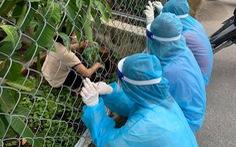 Tình nguyện viên chống dịch xin rau, cộng đồng mạng vẽ tranh vì... thương quá