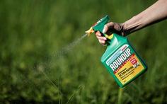 Thu thập thông tin nhà báo, người nổi tiếng, Monsanto bị phạt 473.000 USD