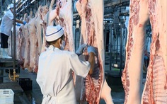 TP.HCM có cung cấp đủ thịt heo khi Vissan giảm hoạt động?