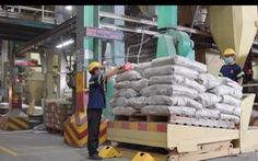 Nhiều nỗ lực duy trì chuỗi cung ứng cho người nuôi tôm mùa dịch