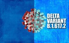 CDC Mỹ: Biến thể Delta lây nhanh như thuỷ đậu, mạnh hơn cúm mùa