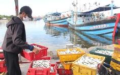 Giải quyết ra sao với tàu cá về lại vùng cách ly ở Đà Nẵng
