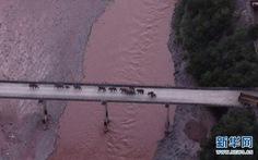 Trung Quốc sơ tán 150.000 dân để 'đón' đàn voi 'về nhà' sau 1 năm rưỡi lang thang