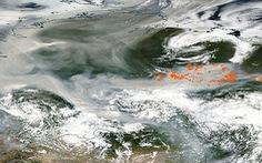 Lần đầu trong lịch sử khói cháy rừng lan đến Bắc Cực