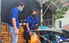 Bình Dương cung cấp miễn phí lương thực, thực phẩm cho 720.000 dân thuộc 11 phường