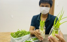 Trữ đông rau, làm giá đỗ, trồng hành thủy canh… cho 7 ngày 'ai ở đâu ở đó'