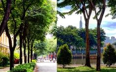 Hiến kế 'TP.HCM nâng tầm quốc tế': Hãy tạo ra một thành phố đáng sống