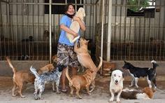 Biệt đội giải cứu thú cưng trong đại dịch COVID-19