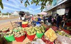 Đắk Lắk kêu gọi doanh nghiệp cấp đông sầu riêng trữ qua dịch