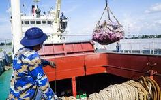 Tàu Hải quân chở nông sản từ miền Tây lên TP.HCM