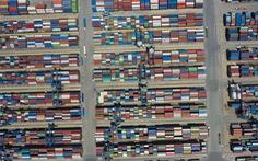 Cảng Cát Lái chật kín container, Cục hàng hải lập Sở chỉ huy tiền phương