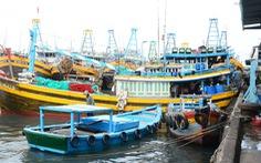Tàu cá từ đảo Phú Quý đã được phép cập cảng Phan Thiết bốc dỡ hàng hóa