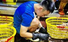 Dừng Giải bóng đá chuyên nghiệp Việt Nam 2021: Hàng ngàn cầu thủ rơi vào khốn khó