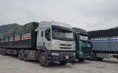 Tạm dừng nhập thanh long Việt Nam, 400 xe nông sản Trung Quốc vẫn được thông quan mỗi ngày