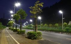 Đèn LED chiếu sáng đường phố làm giảm số lượng côn trùng