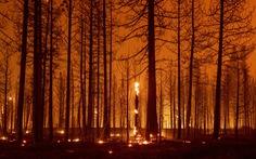 Công bố báo cáo về biến đổi khí hậu - cơ hội mong manh cứu Trái đất