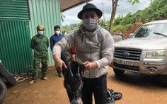 Bắt 'lâm tặc' chất kín xác thú rừng trong 3 tủ cấp đông