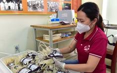 Thứ trưởng Bộ Y tế: TP.HCM cần xây dựng 'ngân hàng máu sống' tại tuyến huyện