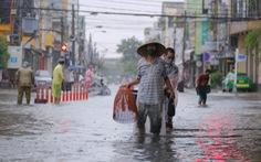 Mưa ngập nội thành, người dân Đà Nẵng ra đường bắt cá