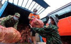 TP.HCM đã đón nhận hơn 5.500 tấn nông sản sạch Lâm Đồng gửi tặng