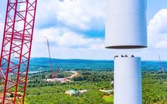Nhà đầu tư điện gió than khó khi chính sách COD điện gió thay đổi