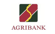 Agribank Chi nhánh Bắc TP.HCM thông báo tuyển dụng lao động năm 2021