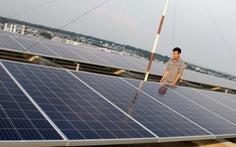 Chủ đầu tư điện mặt trời dọa kiện các công ty điện lực vì bị cắt giảm sản lượng
