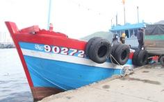 Từ sáng 30-9, cảng cá lớn nhất miền Trung ở Đà Nẵng hoạt động lại