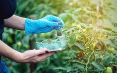 Anh nới lỏng quy định về chỉnh sửa gene trong nông nghiệp
