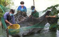 Bộ đội về thôn quê giúp nông dân vác lúa, bắt cá, giao sách giáo khoa cho học sinh