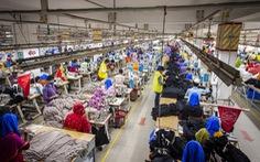 Hoạt động của các nhà máy ở châu Á chững lại do dịch bệnh