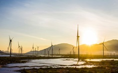 GWEC: 6,7 tỉ USD đầu tư cho điện gió ở Việt Nam gặp rủi ro do COVID-19