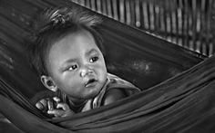 Nghệ sĩ nhiếp ảnh Lê Hồng Linh nhận tước hiệu mới