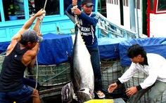 Bảo vệ ngư dân chính là bảo vệ chủ quyền