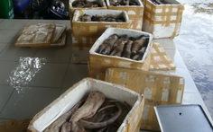 Thu giữ hơn 400kg thịt trâu không rõ nguồn gốc