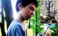 13 tuổi khám phá bí mật hấp thụ ánh sáng của cây