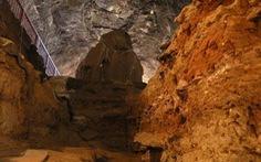 Loài người biết dùng lửa từ 1 triệu năm trước