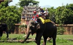 Cưỡi voi tham quan Đại nội Huế
