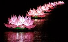 Sông Hương huyền ảo sen hồng hoa đăng