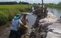Nước sông dâng cao, hơn 5.000ha lúa bị ngập