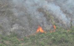 Đà Nẵng: cháy hơn 15ha rừng do đốt thực bì
