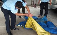 Hà Tĩnh: thêm vụ vận chuyển động vật hoang dã