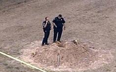Mỹ: bé 7 tuổi chết vì bị chôn trong cát