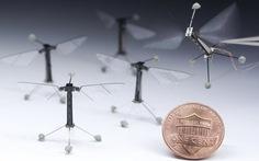 Robot bay nhỏ nhất thế giới
